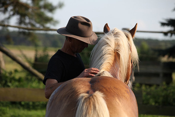 Horse and health