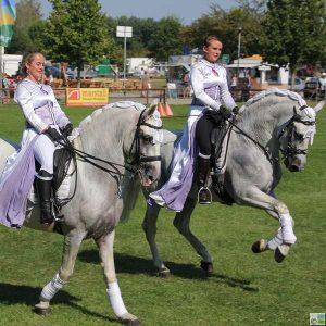 Brandenburger Pferdesommer vom 24. bis 26. August 2018